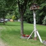 Gepflegter Rasen für Camper